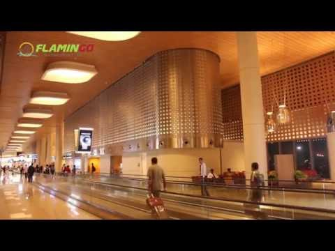 How To Book Your International & Domestic Flight Tickets ? - Flamingo Travels