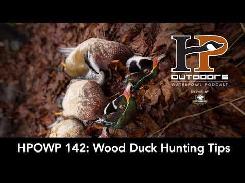 HPOWP 142: Wood Duck Hunting Tips