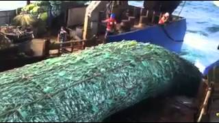 Stop the madness... end super trawlers!