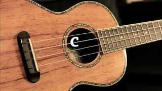 AFINADOR UKULELE - TUNER ( G C E A )