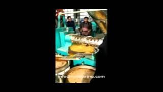tea seed camellia oil  press machine