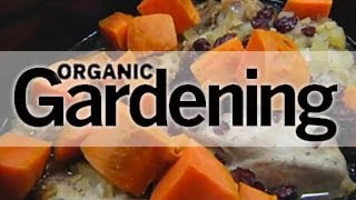 Organic Gardening's Guide To Making Turkey Stew