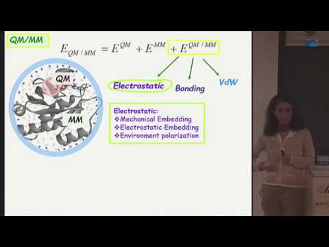 Avital Shurki (The Hebrew University of Jerusalem) QM/MM: the way to understand enzymes