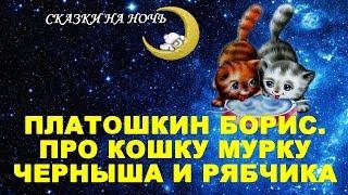 Сказки на ночь - Про кошку Мурку ,Черныша и Рябчика