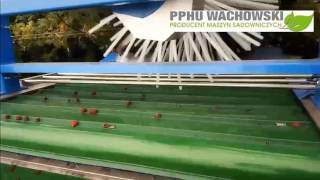 Kombajn do malin letnich prowadzonych na podporach PPHU Wachowski 2017