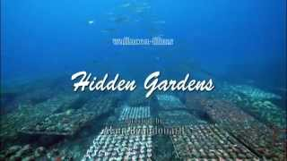 Corals Farming Indonesia - Hidden Gardens