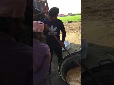 making-of-desi-gurr-(jaggery)-#gurr-#jaggery-#sweet-#sugarcane-#patiala-#punjab-#india