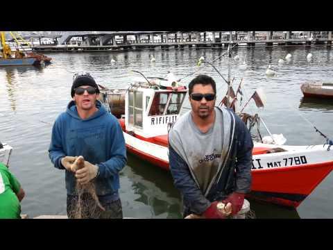 Pescadores de Punta del Este