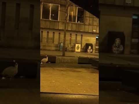 4am in cork city