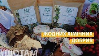 Український чай | #ШоТам UA