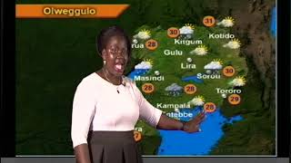 Weather Forecast For 02 11 2017  Luganda