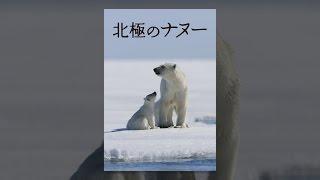 北極のナヌー(字幕版) thumbnail