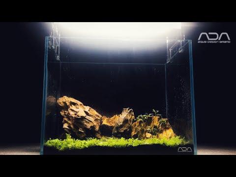 ADA 3 Gallon Aquarium SETUP
