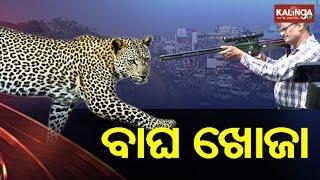 Bhubaneswar: Forest & Nandan  Kanan Officials initiate 'Operation Tiger' | Kalinga TV
