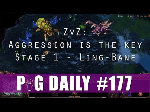 ZvZ - Aggression is the Key - Stage 1 - Ling-Bane - The PiG Daily #177