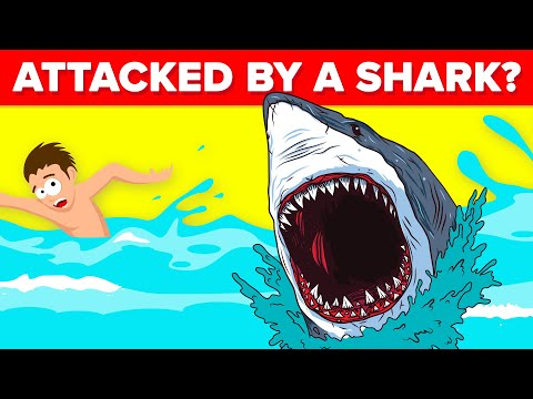 Do These Things To Survive A Shark Attack
