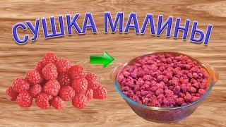 Как сушить ягоды малины? Малиновая пастила