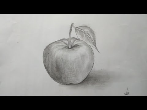 How To Draw Simple 3d Apple Pencil Sketch Niloy Art Youtube