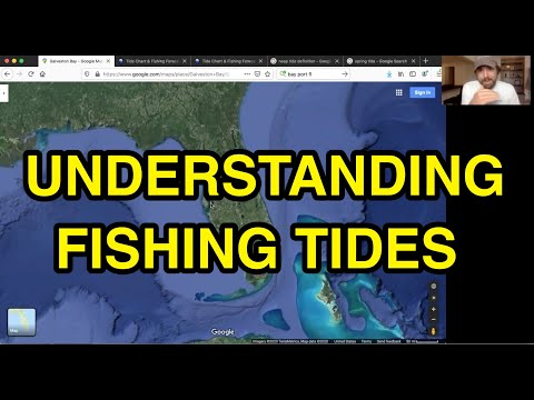 Fishing Tides: What You Really Need To Know About Tides