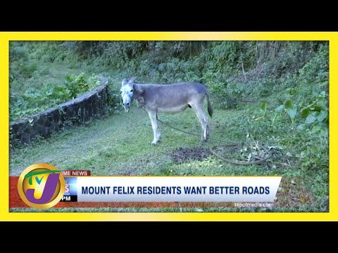 Mount Felix Residents Want Better Roads | TVJ News