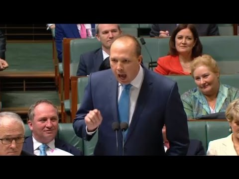 Point of order on weirdness: Peter Dutton's 'amazing story' interrupted by Anthony Albanese