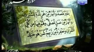 التلاوات المختارة   الشيخ ياسين ( سورة محمد )
