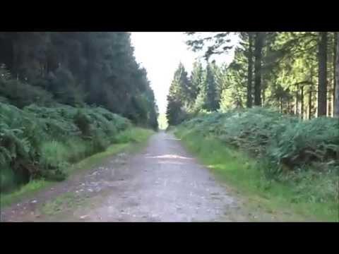 Winscombe Rowberrow Cheddar Walk, PART XI, 'Rowberrow Warren Uphill' by Sheila, Sept 7th 2015
