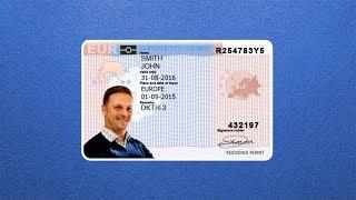 EU Blue Card: filling the skills gap