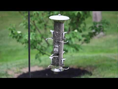 Stokes Select® Harmony Bird Feeder
