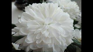 ЛЕРУА МЕРЛЕН ---ОБЗОР цветочного рая.