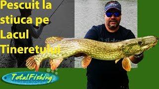 Pescuit la stiuca pe Lacul Tineretului