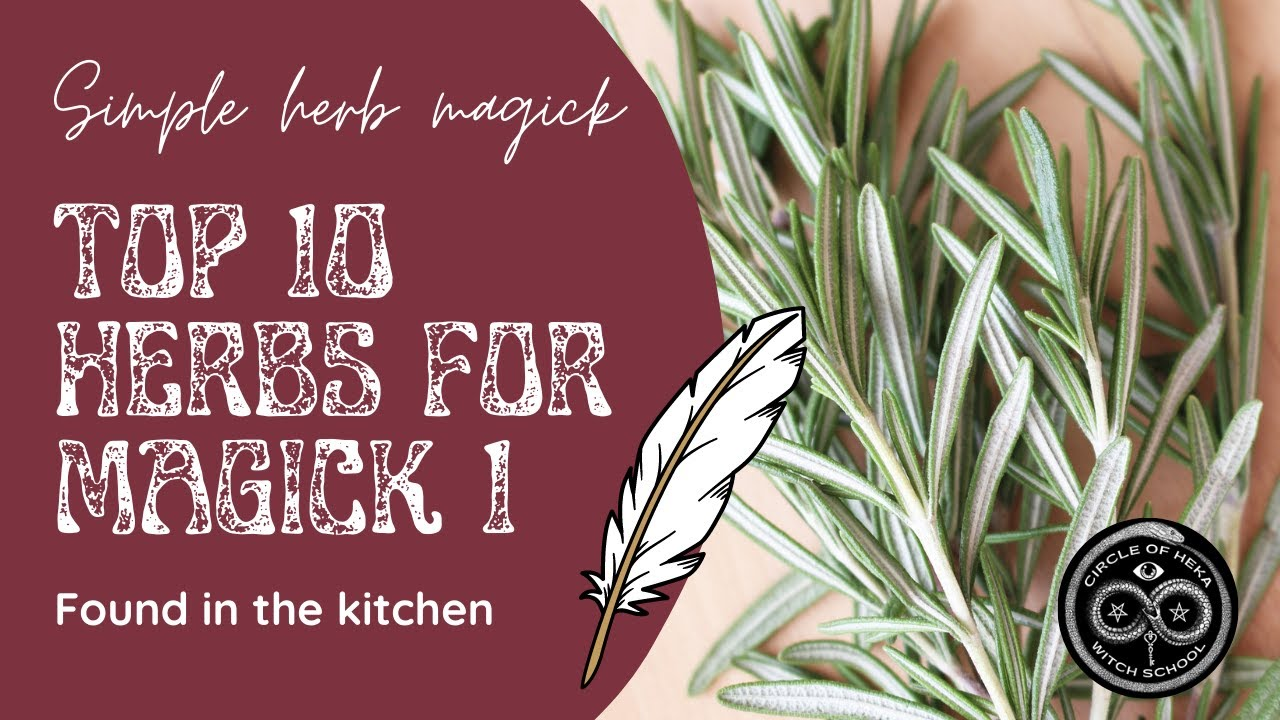 10 Herbs for Magick, you can find in your kitchen