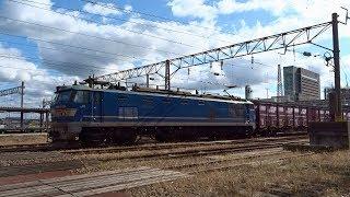 2019.11.04 貨物列車(4061列車)秋田駅発車