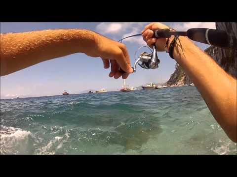 Spin Passion Capri: Caranx a Light Rock Fishing
