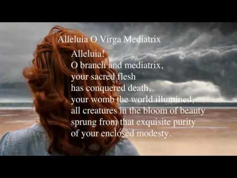 Alleluia O Virga Mediatrix