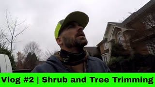 Trimming Trees and Shrubs the Hard Way