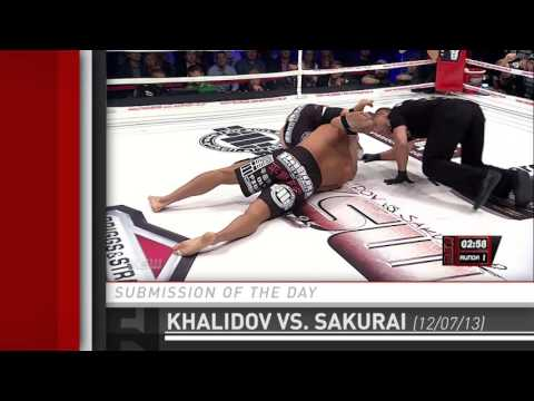 Submission Of The Day: Mamed Khalidov Triangle Chokes Ryuta Sakurai At KSW 25