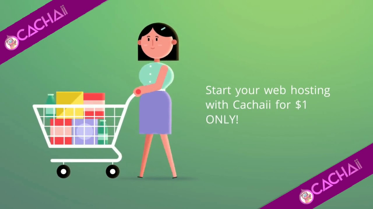 Affordable Website Hosting Plans From Cachaii