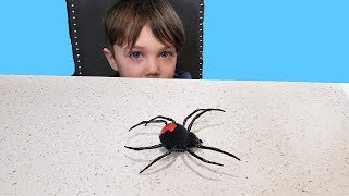 Itsy Bitsy Spider Nursery Rhymes & Kids Songs