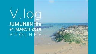 Vlog#1 바닷가 마을 컨테이너하우스 라이프 / 강릉…