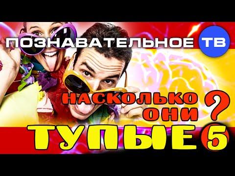 Программа-хранилище Яндекс