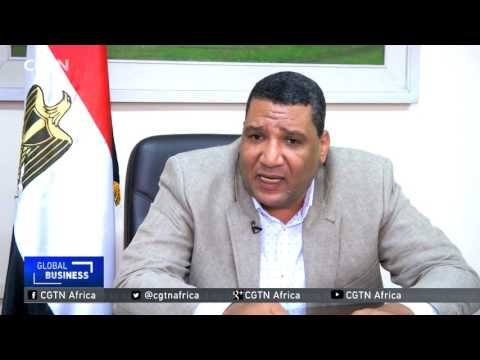 Egypt government to stop subsidizing flour, cut wheat imports