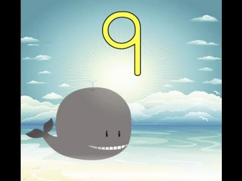 Counting By Nines Song (Learn to Count by 9 for Kids)