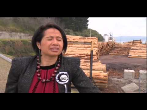 NZ First's East Coast candidate focuses on region's economy