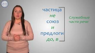 Русский язык 5 класс. Самостоятельные и служебные части речи