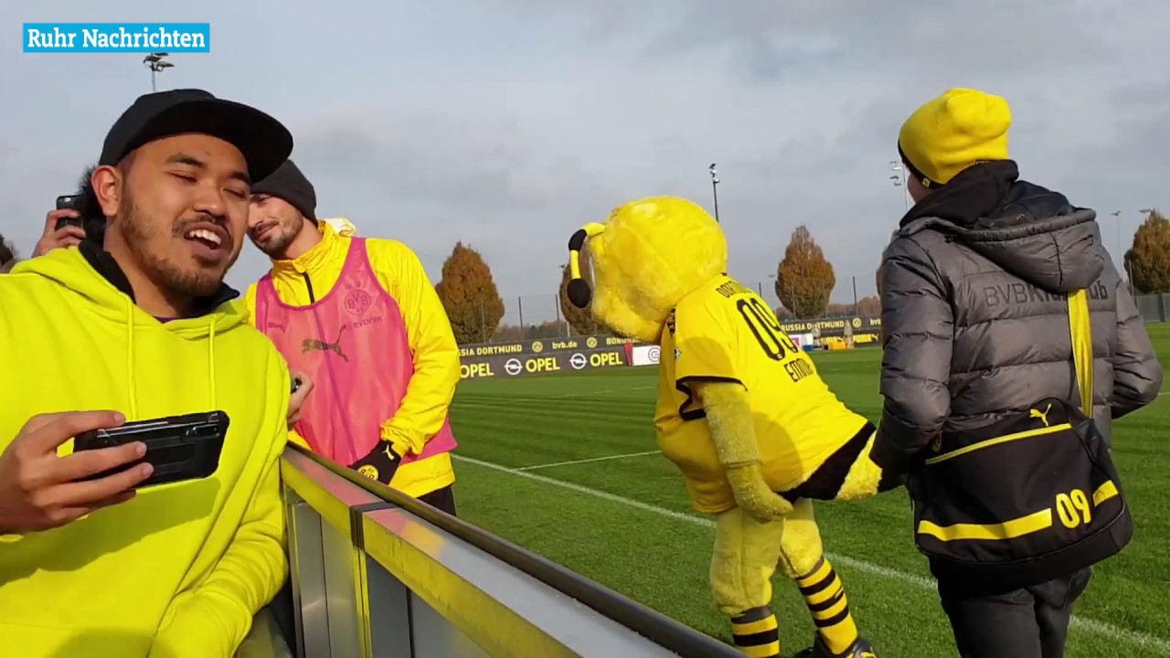 BVB-Training vom 15.11.2019