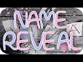 BABY GIRL'S NAME REVEAL!