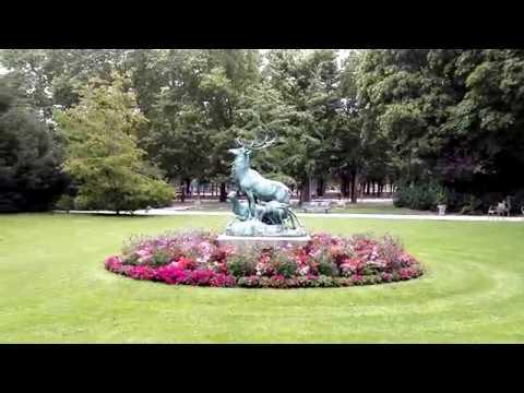 Au jardin du Luxembourg, test du Feiyu SPG C