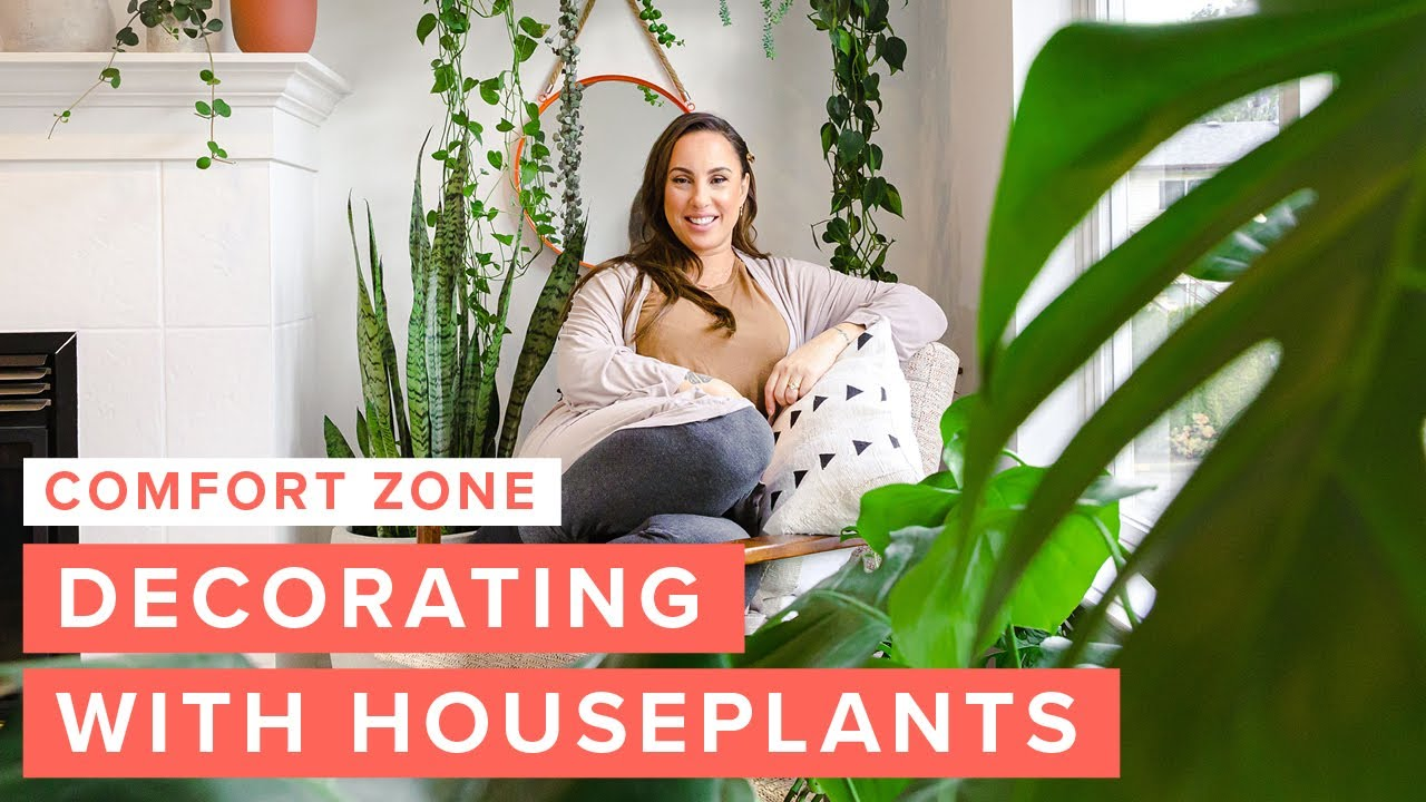 Indoor Gardening: Decorating with Houseplants