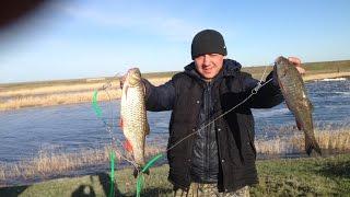 Рыбалка в Казахстане, Канал Кушум, Битикское Водохранилище
